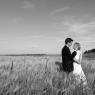 photographie mariage Seine et Marne en noir et blanc dans les champs de blés